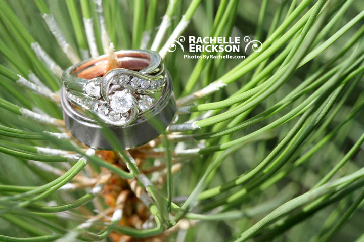 Rachelle_Erickson_Seattle_Photographer,Wedding_Photographer,Destination_Photographer_Couples_Brides,Maple_Valley_The_Wilderness_Lodge
